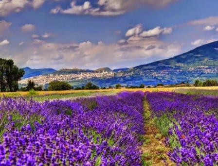 Assisi e Castelnuovo
